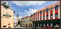 bernard.cz